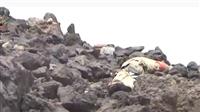 كاميرا حوثية توثق لحظة مصرع عناصرها في جبهات مأرب (فيديو)