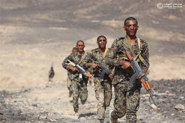 Yemen security forces affirm readiness to secure Hodeida