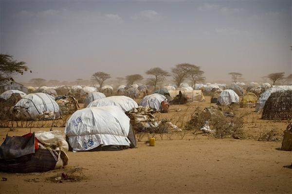 مقتل لاجئ يمني برصاص رجل أمن في إحدى مخيمات اللجوء الأممية في الصومال