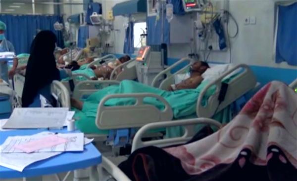 إب..تسجيل 10 حالات وفاة بإنفلونزا الخنازير وإصابة العشرات خلال ديسمبر