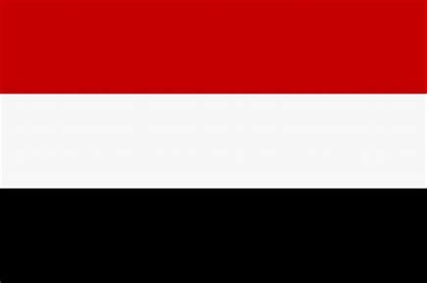 Yemen government welcomes US appointment of envoy to the country