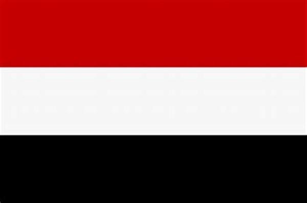 وزارة الخارجية تدين اعتداء ميليشيا الحوثي على سفينة تجارية سعودية